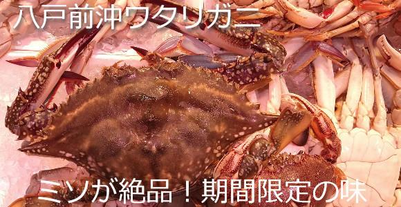 旬の蟹!ワタリガニがおススメ!
