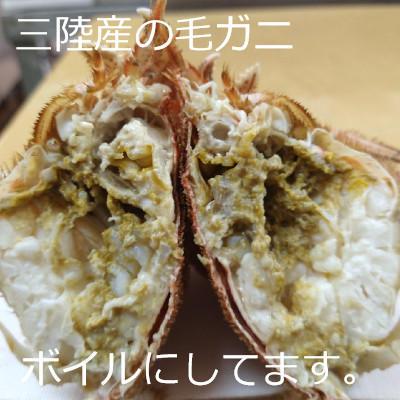 週末恒例毛ガニ祭り開催中!