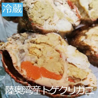 トゲクリガニが続々入荷中!(坂下商店)